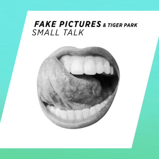 Fake Pictures / Small Talk